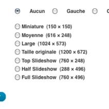 Onglet media de WordPress, plusieurs tailles d'images