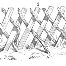 Clôture de branches