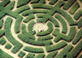 «Labyrint barvaux» par Benoit.dessucy — Travail personnel. Sous licence CC BY-SA 3.0 via Wikimedia Commons.